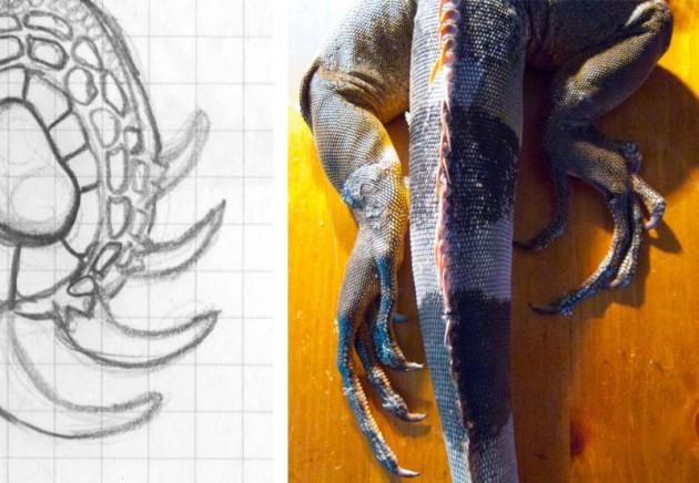 Iguana3